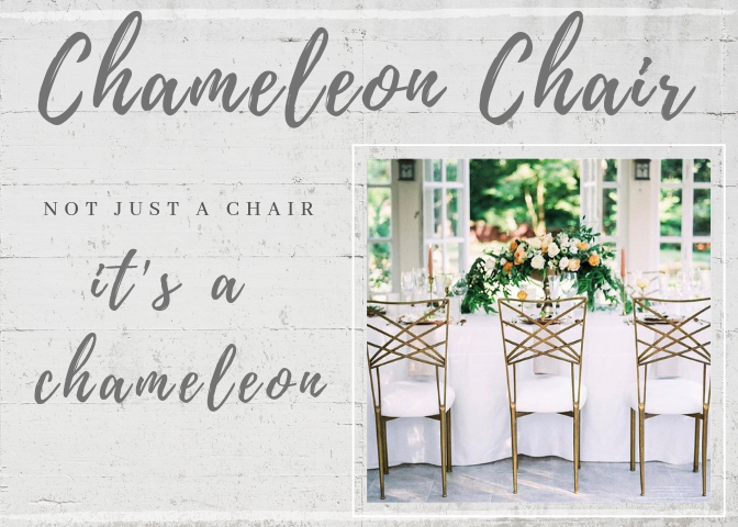Party Reflections Chameleon Chair Now Available!